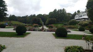scaled-garden